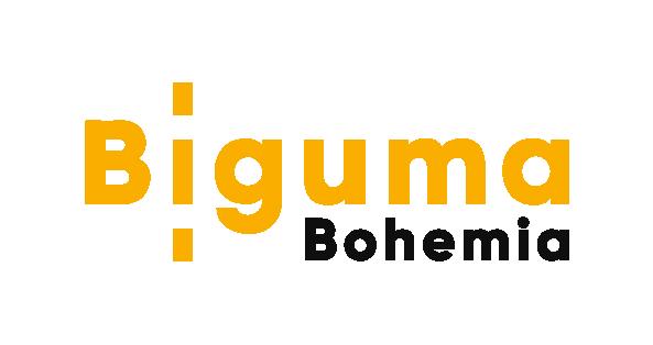 Biguma.cz – S námi máte úspěch na cestě